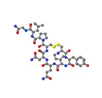 Oxytocin_1